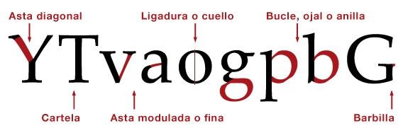 tipografia Mimedu elementos básicos del diseño