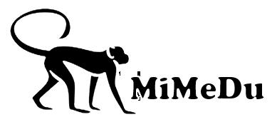 Mimedu - Diseño Web en Palencia